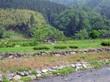 Asakuraiseki44