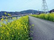 Fukuidou24_1